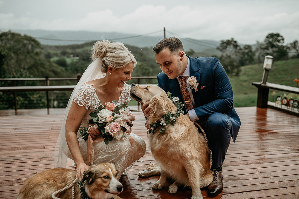 bride and groom kneeling with their puppies